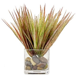 Creative Displays Red/ Green Grass in a Square Glass Vase