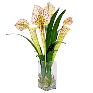 Creative Displays Orchid Vase Decoration