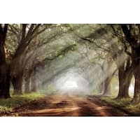 Mike Jones 'Evergreen Plantation' Gallery Wrap Canvas