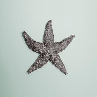 Deep Pewter Small Starfish