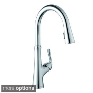 Schon Concealed Chrome Pull-down Sprayer Kitchen Faucet