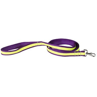 Petflect Purple/ Yellow Reflective AdventurePlay Leash