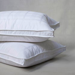 Extra Firm Goose Feather Standard-size Pillows (Set of 2) - Thumbnail 0