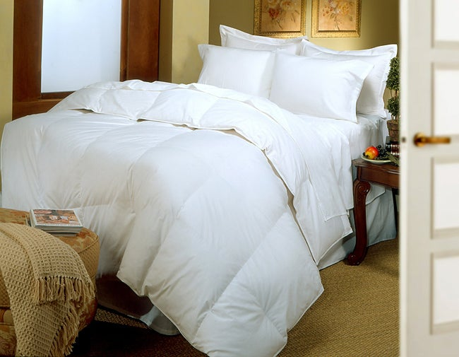 Egyptian Cotton Wool Comforter