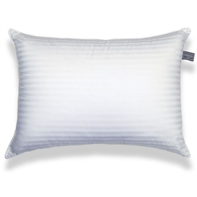Croscill 500 Thread Cound Firm Density Bed Pillows