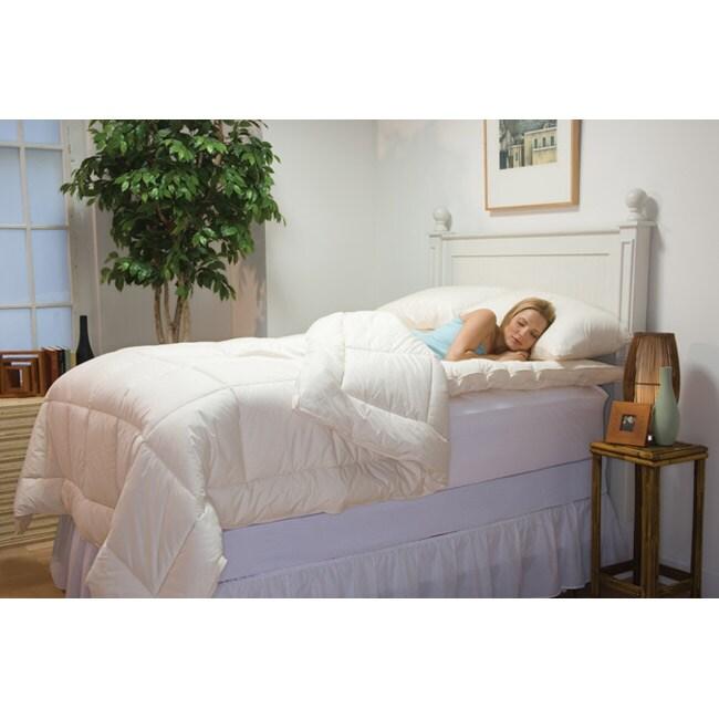 Organic Oversized King Size Comforter Free Shipping