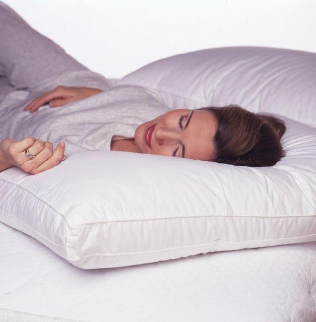 Croscill 500 tc Twin Pack King Pillows