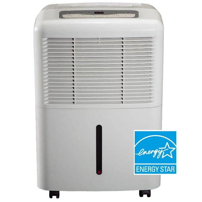 Portable 30-pint Energy Star Dehumidifier