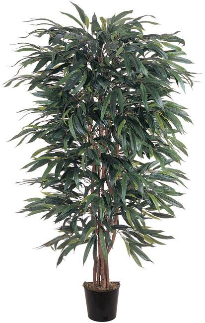 Weeping Ficus 5-foot Silk Tree