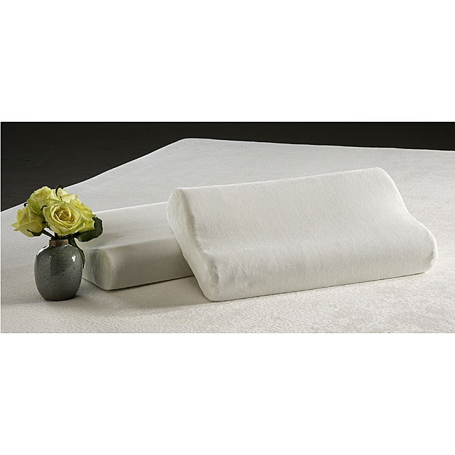 Evergreen Contour Pillow Twin Pack