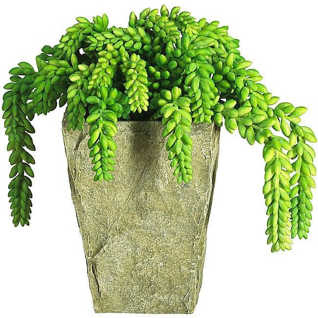 Sedum Silk Plant with Vase