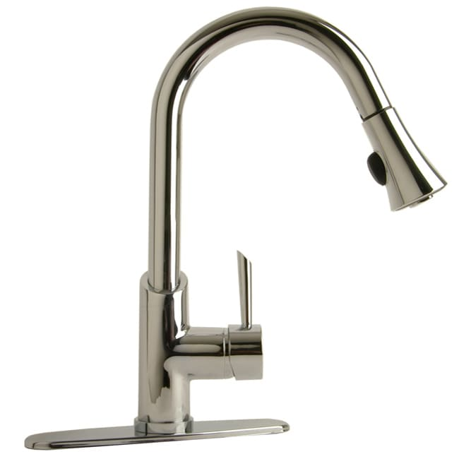 Pro Series Chrome Pull-down Kitchen Faucet