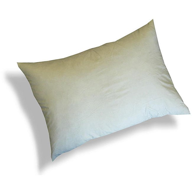 Shop Feather And Down 40x40inch Decorative Pillow Inserts Set Of 40 Custom Oblong Pillow Inserts