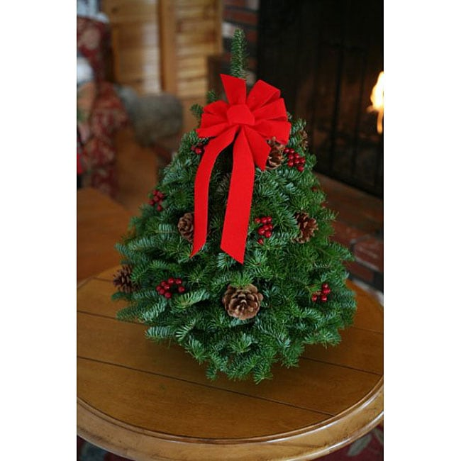 Worcester Wreath Classic Fresh-cut Maine Balsam 18-inch T...