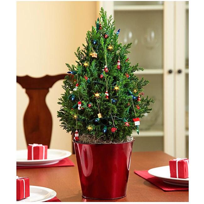 Santa's Workshop Mini Cypress Tree