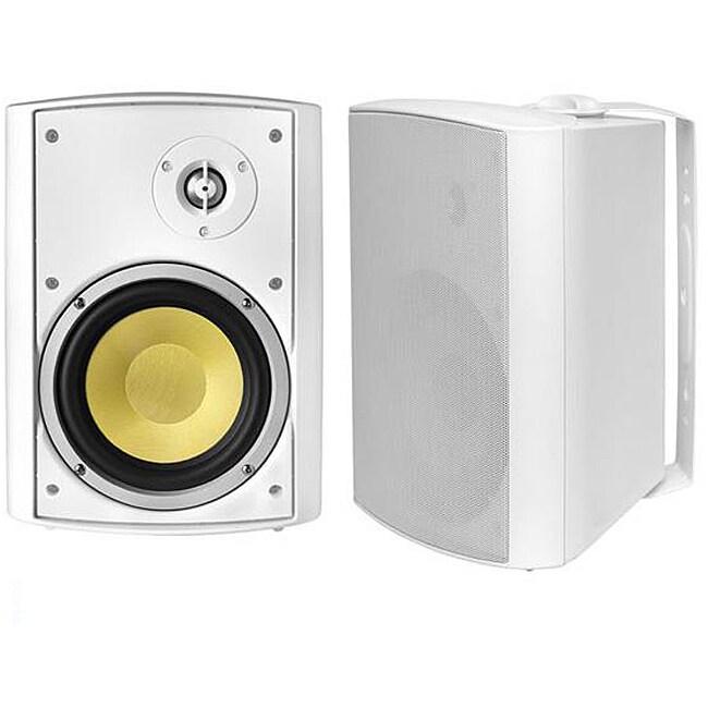 BIC America VK-6IO Indoor/Outdoor Kevlar Speakers