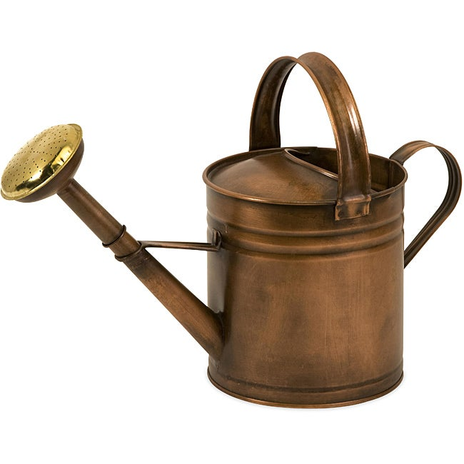 Americana Farmhouse Friends Morning Mist Watering Can