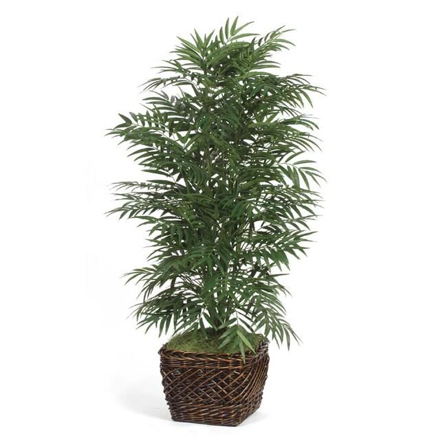 Deluxe 5-foot Phoenix Palm Tree