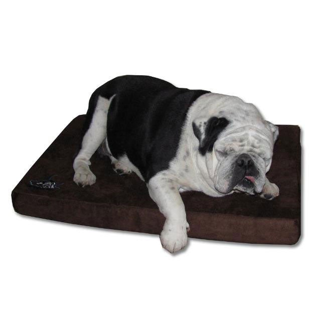 DreamyPet Large 3-inch Memory Foam Microfiber Cover Dog Bed