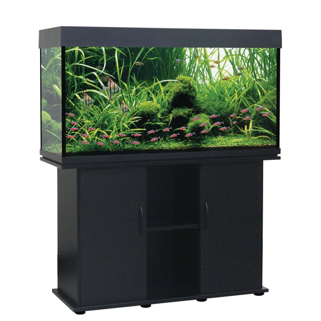 Delta Queen 75-gallon Aquarium and Stand