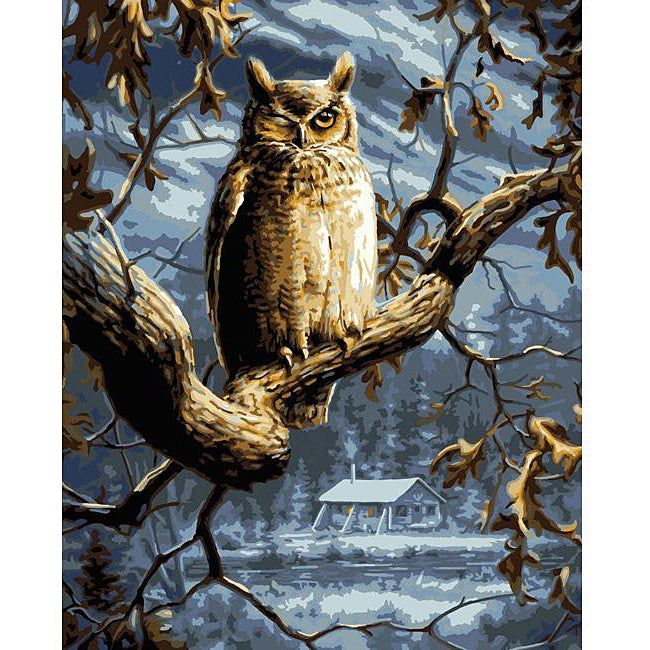 Paint By Number 'Night Owl' Kit