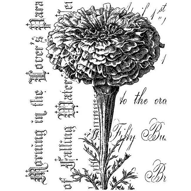LaBlanche Marigold On Script Silicone Stamp