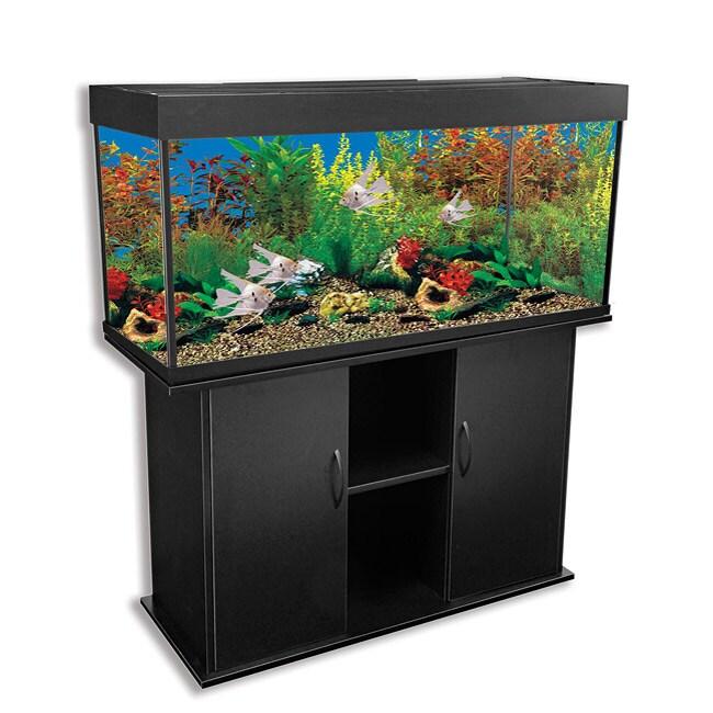Delta Queen 66-gallon Rectangular Aquarium and Stand