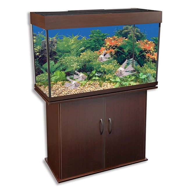 Delta Queen 29-gallon Aquarium and Stand