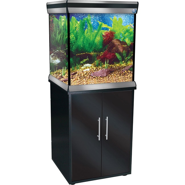 Empress Cube 37-gallon Aquarium and Stand