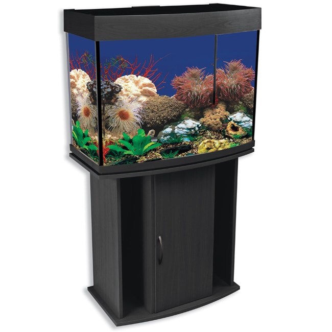 North Star 42 Gallon Bow Front Aquarium And Stand Free