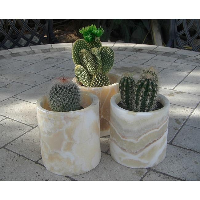 Set of 3 Alabaster Planting Pots Planter (Egypt)