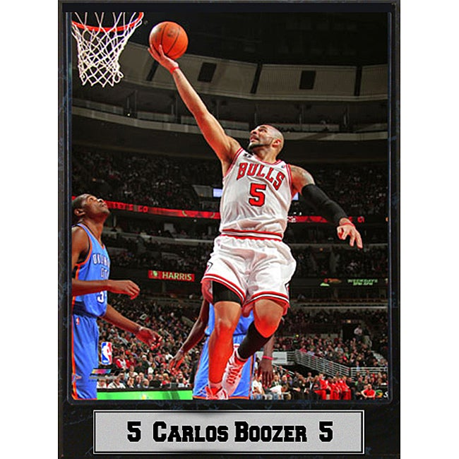 Chicago Bulls Carlos Boozer Stat Plaque
