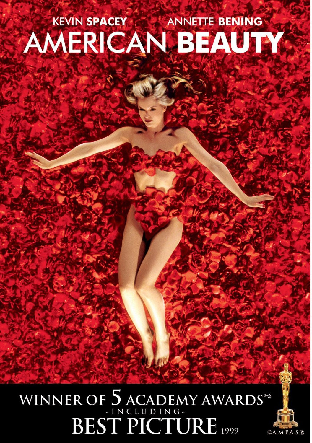 American Beauty (DVD)