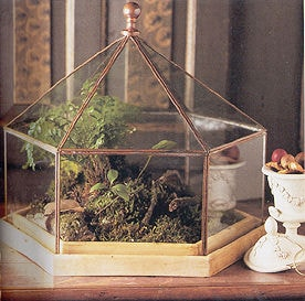 Shop Large Six Sided Terrarium With Copper Edging Ships To Canada