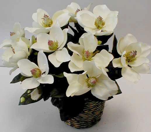 White Magnolia Double-potted Silk Bush