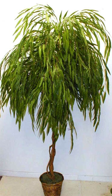 Grand 7 Foot Weeping Willow Silk Tree Free Shipping Today Overstock Com 925960