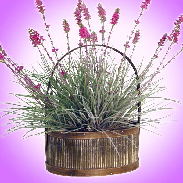 Forever Silk Lavender Fields Silk Plant