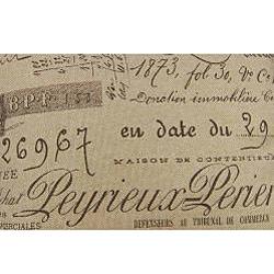 Antique Script Decorative Throw Pillows (Set of 2)