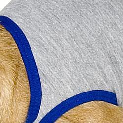 American Apparel Heather Grey/ Royal Blue California Fleece Dog Vest