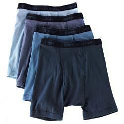 Hanes Men's Assorted Pre-Shrunk Blue Boxer Briefs (Pack of 4)