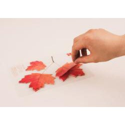 Leaf-it Maple Red Medium Sticky Notes (Pack of 20) - Thumbnail 1