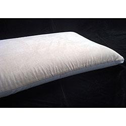 Italian Memory Foam Pillow With Aloe Vera Cover Free