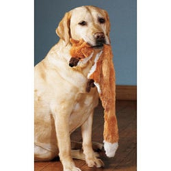 Mini Skinneeez 13-inch Two Squeaker Stuffingless Dog Toy 4-piece Set - Thumbnail 2