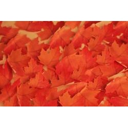 Leaf-it Maple Red Medium Sticky Notes (Pack of 20) - Thumbnail 2