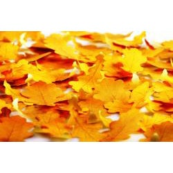 Leaf-it Oak Yellow Medium Sticky Notes (Pack of 20) - Thumbnail 2