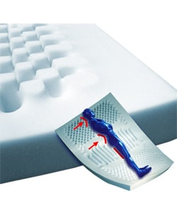Shop Lumbar Support Foam Mattress Overlay With Border Free Shipping On Orders Over 45