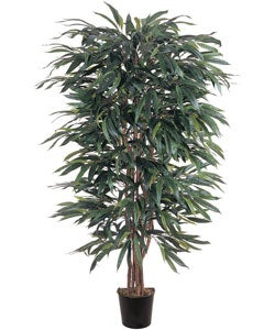 Weeping Ficus 5-foot Silk Tree