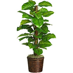 Large-leaf 51-inch Philodendron Silk Plant - Thumbnail 0