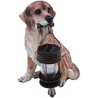 Tricod Golden Retriever Dog with Solar Light Lantern