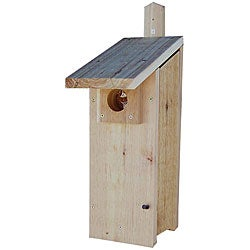 Stovall Woodpecker House